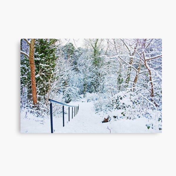 Steps in the Snow Metal Print