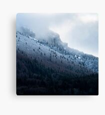 Première neige en Chartreuse Impression sur toile