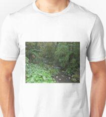Creek, Border Ranges National Park Unisex T-Shirt