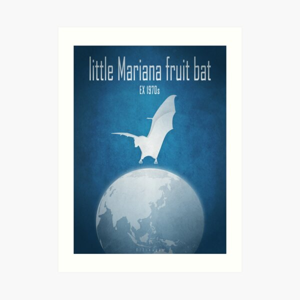 Little Mariana fruit bat/Guam flying fox - extinct animals Art Print