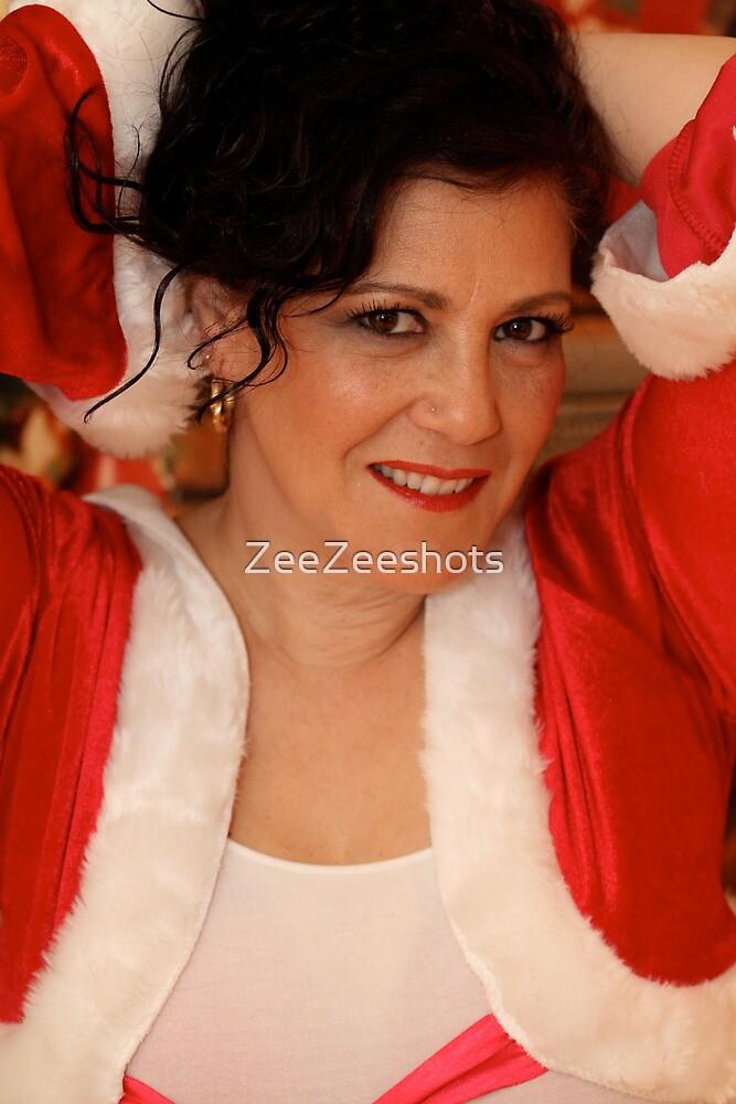 Getting ready for Santa by ZeeZeeshots