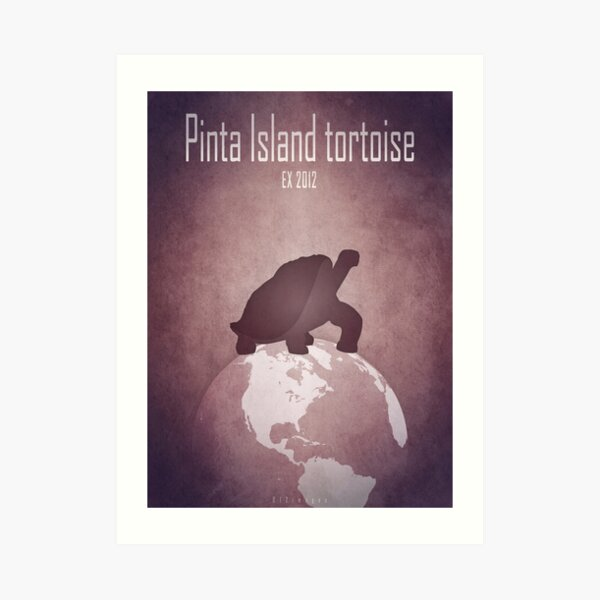 Pinta Island tortoise/Giant turtle - extinct animals Art Print