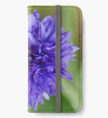 Cornflower Blue Bachelor Button Flower iPhone Wallet/Case/Skin