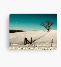 After effects from xmas snow storm. Canvas Print
