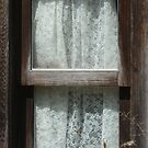 Laced Window by Lynn  Gibbons