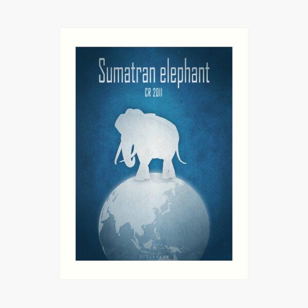 Sumatran elephant - endangered species Art Print