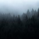 Mist in Chartreuse by Patrice Mestari
