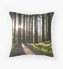 Retreating Sun Throw Pillow