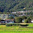 My headquarter Telfs-St. Georgen Tirol by Elzbieta Fazel