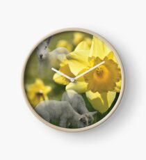 Spring! Lambs and Daffs Clock