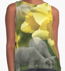 Spring! Lambs and Daffs Sleeveless Top