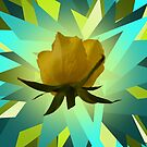 Glowing Rose Graphic by Slieve Bloom Design
