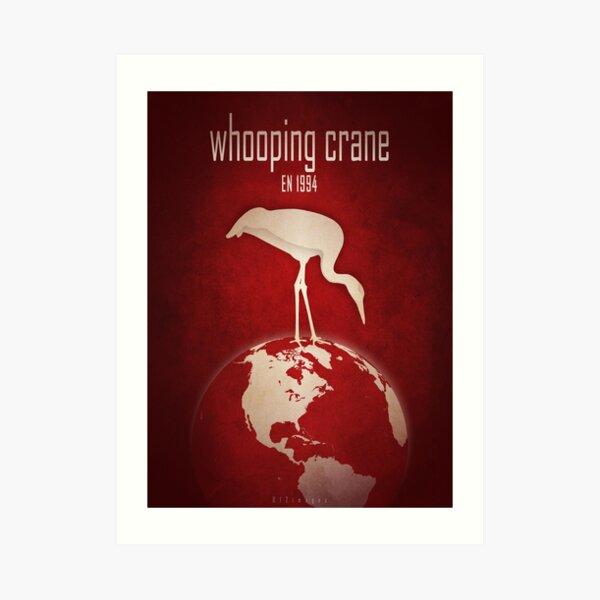 Whooping crane - endangered animals Art Print