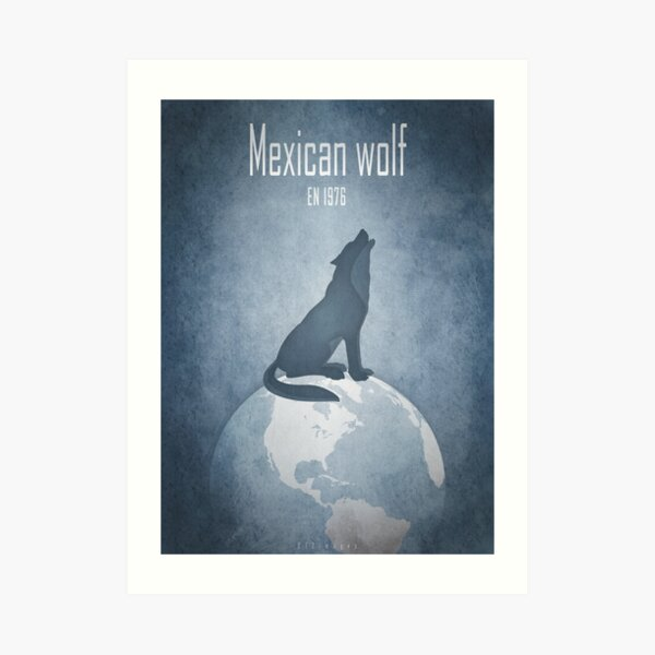 Mexican wolf - endangered animals Art Print
