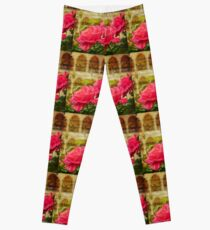 Turkey. Istanbul. Roses of the Blue Mosque. Leggings