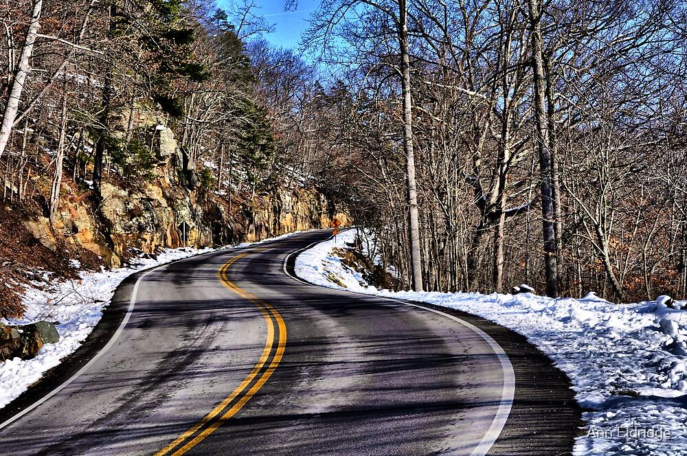 Winter Afternoon Drive by Ann Eldridge
