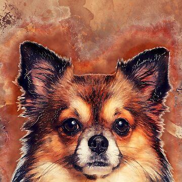 Chihuahua #Chihuahua #dog #animals by JBJart