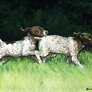 German Shorthaired Pointer Puppies Playing by Charlotte Yealey