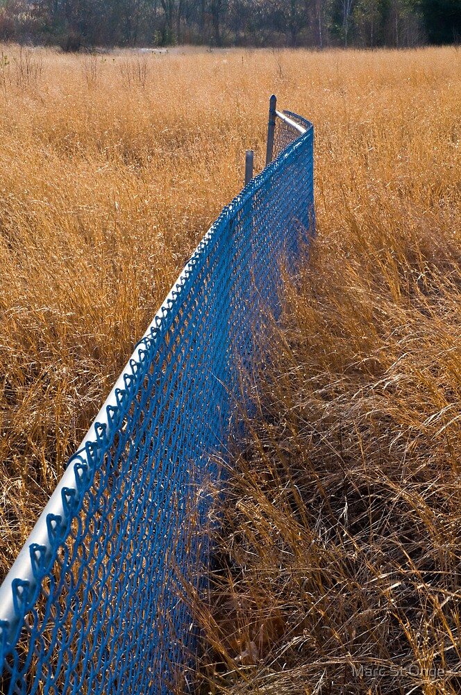 Blue Fence by Marc St.Onge