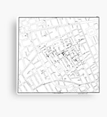 John Snow's Cholera Map Canvas Print