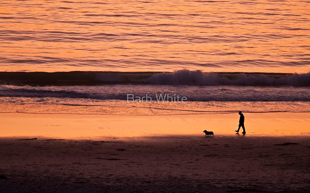 Man's Best Friend by Barb White