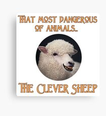 That Most Dangerous of Animals - The Clever Sheep Canvas Print