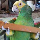 Kellie Bird Is My Precious by Laura Puglia