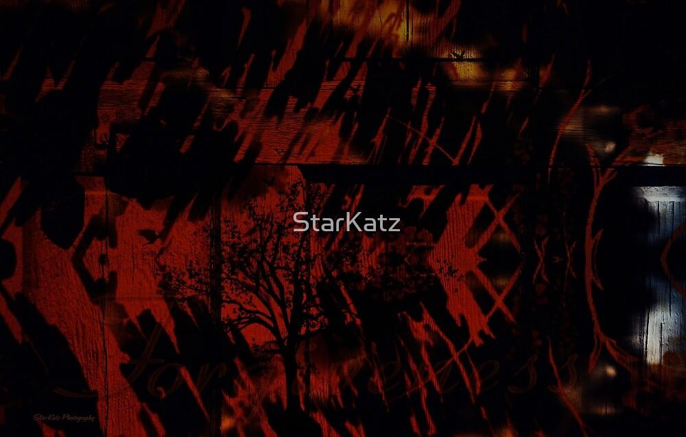 """""""The Hidden Message"""" by StarKatz"""