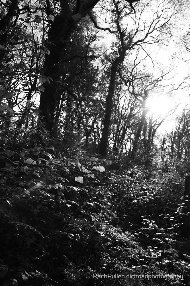Forest Spirits by Rachel Pullen