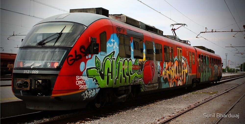 Train at Slovenia by Sunil Bhardwaj