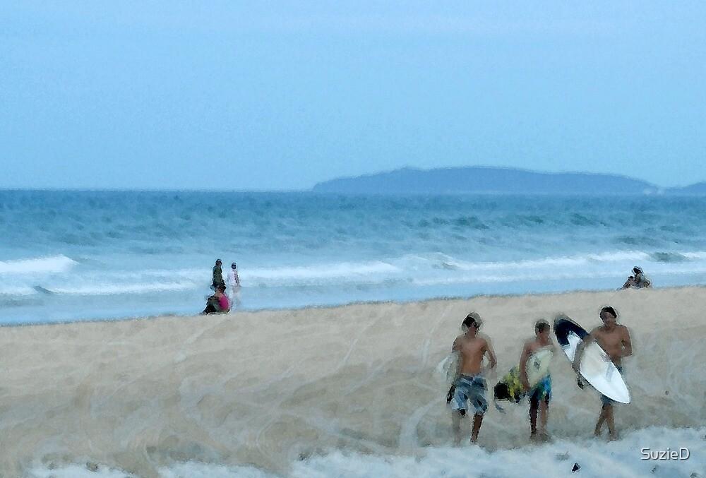 Beach Boards by SuzieD