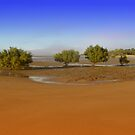Mudflats by Jayson Gaskell