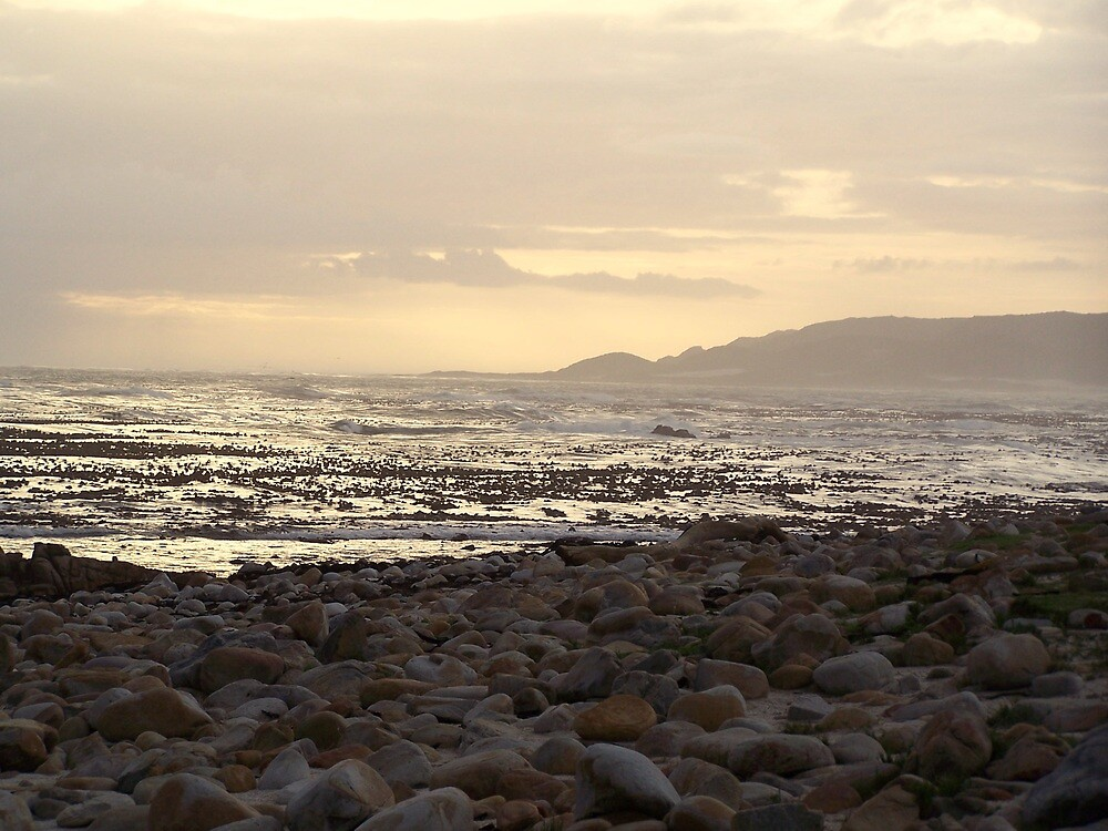 Pebble Beach - Cape of Good Hope by karendawson