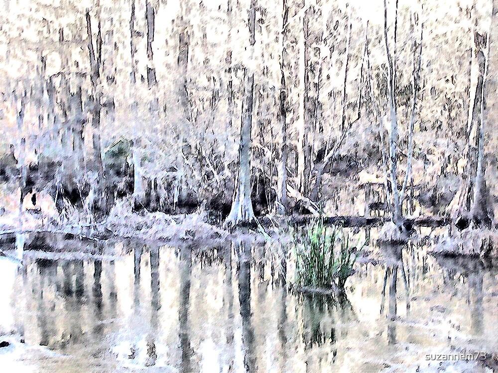 Swift Creek by suzannem73