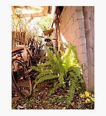 Bike Lane in the Light Photographic Print