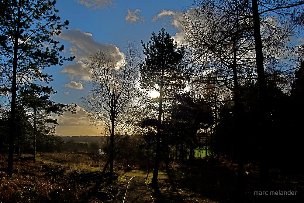 Twilight by marc melander