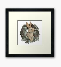 Winter Rabbit Framed Print