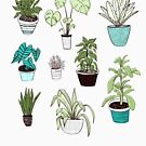 sometimes I wet my plants by Michelle doran