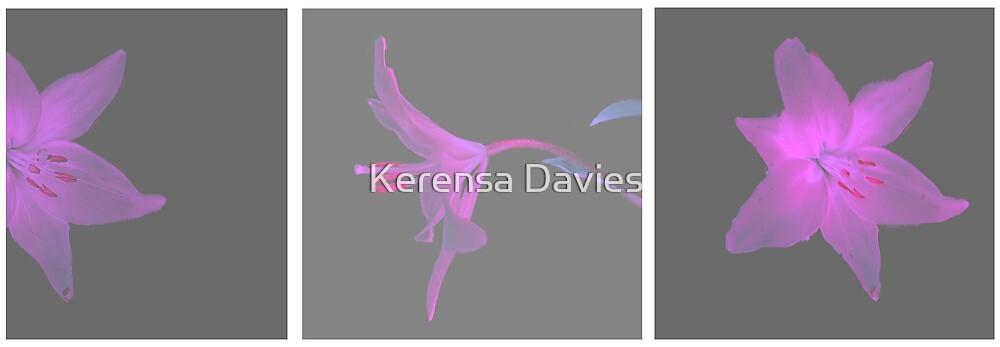 Three View by Kerensa Davies