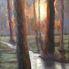 Sunrise Creek by Dan Wagner