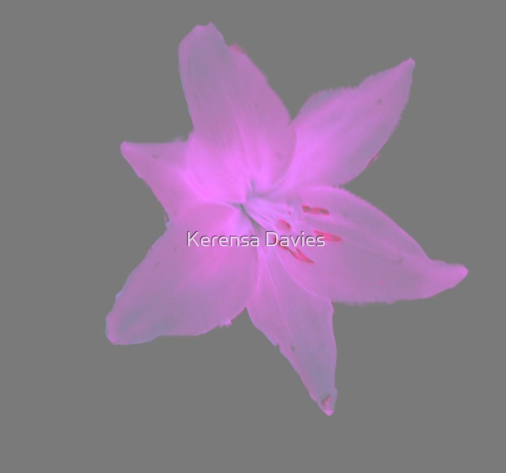 Lily 2 by Kerensa Davies