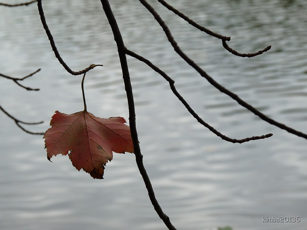 red leaf by kimba20136