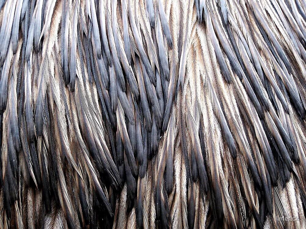 Lady Emu by limerick