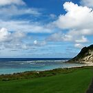 Lord Howe island-2 by Alexey Dubrovin