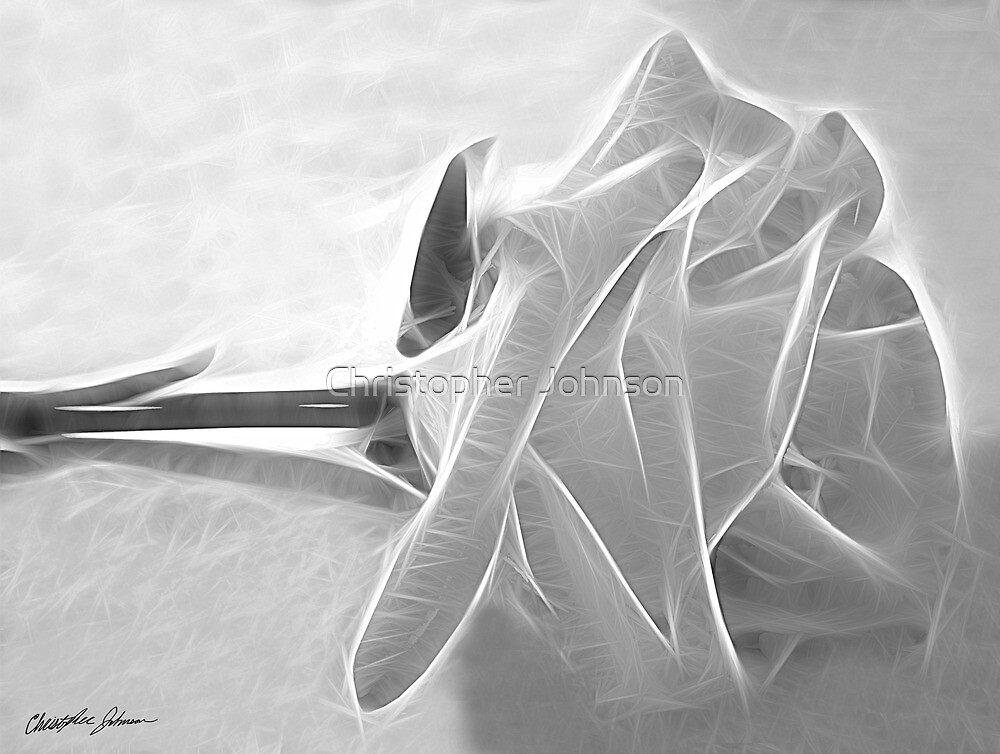 Essence of a Rose 4 by Christopher Johnson