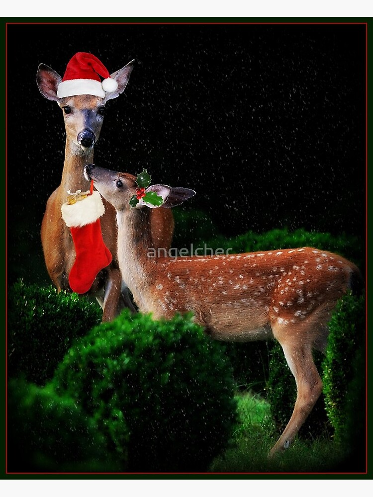 Christmas Deer by angelcher