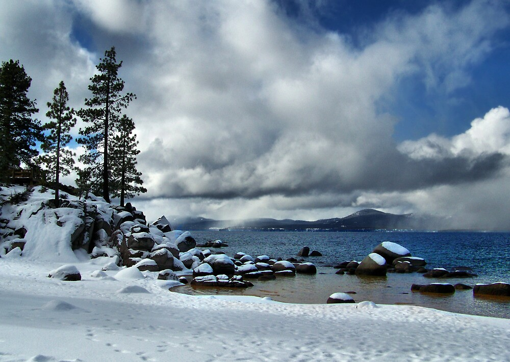 Winter Wonderland by Marylee Pope