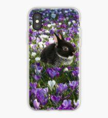 Osterhase im Frühjahr iPhone-Hülle & Cover