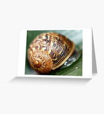 Slimey Greeting Card
