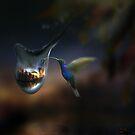 Avian Reflection by Igor Zenin